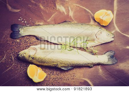 Vintage Photo Of Two Rainbow Trout On A Tinware