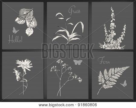 Vector floral card set