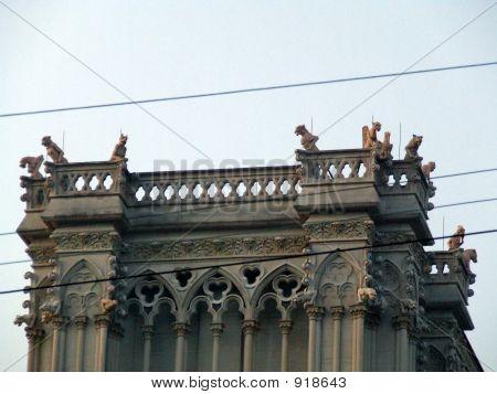 Gargoyles On High