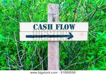 Cash Flow Directional Sign