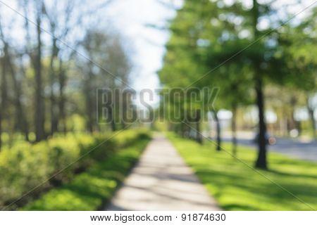 city park alley bokeh background 50mm lens