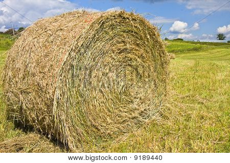 Hay Harvest  Stacks