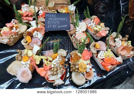 Mushrooms at London Borough Market UK. Food marketplace.