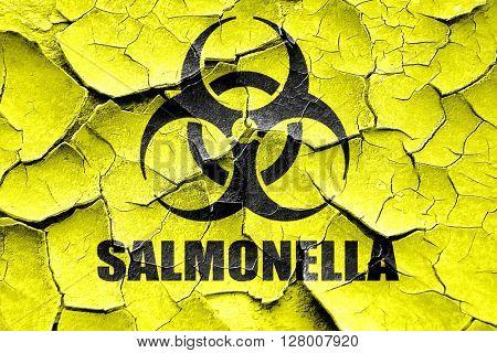 Grunge cracked Salmonella concept background