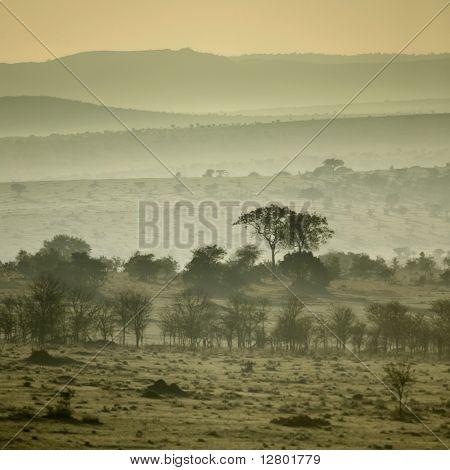Africa landscape Serengeti National Park, Serengeti, Tanzania