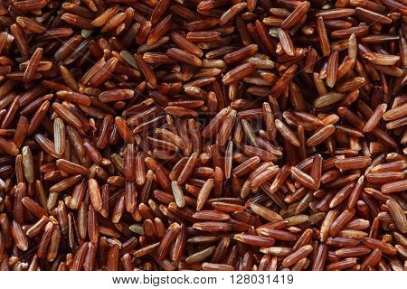 photo of red unpolished rice, dry wild rice