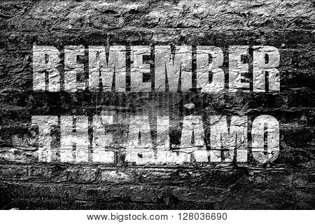 poster of remember the alamo