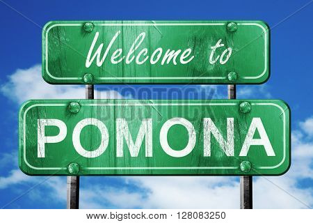 pomona vintage green road sign with blue sky background
