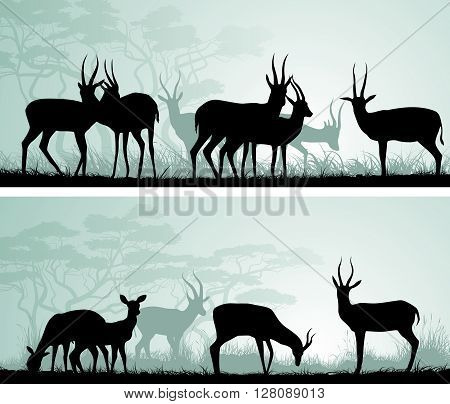 Set of horizontal abstract wide banners of herd antelope in African savanna with trees.