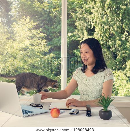 Mature woman working at home with cat and large daylight window in background. Light haze effect applied to image.