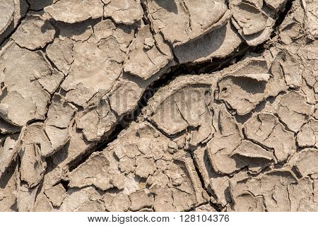 Scorched Cracked Earth