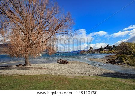 beautiful scenic of lake wanaka in south island new zealand important landmark and traveling destination