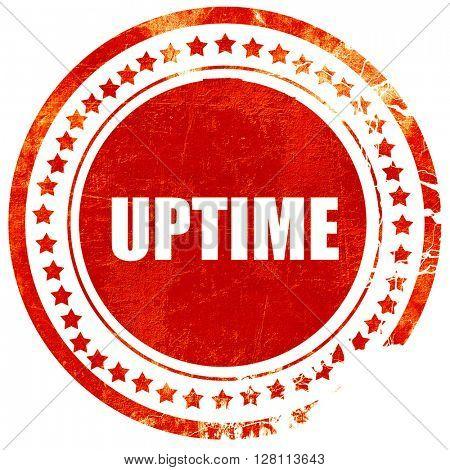 uptime, red grunge stamp on solid background