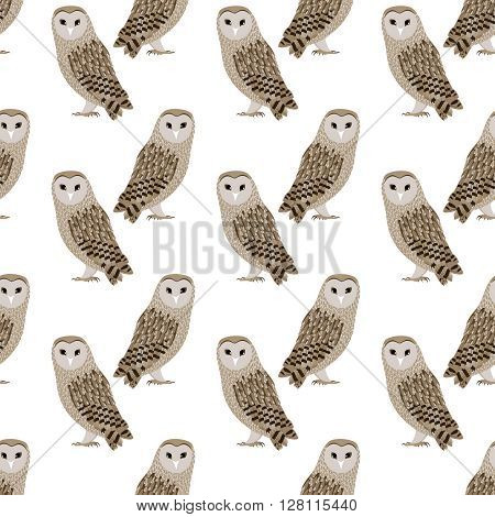 Seamless pattern of vector Barn Owl. Barn Owl background. Vector art background design for fabric, papper, skrapboking and decor.