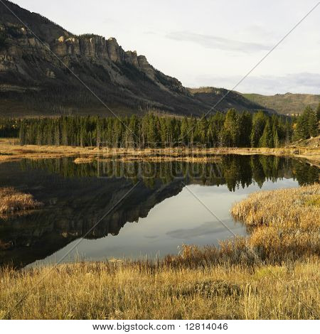 Wyoming mountains reflected in lake surrounded by golden field.