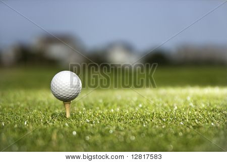 Golf ball and tee on golf course.