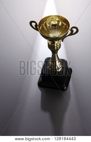 golden trophy on the gray background