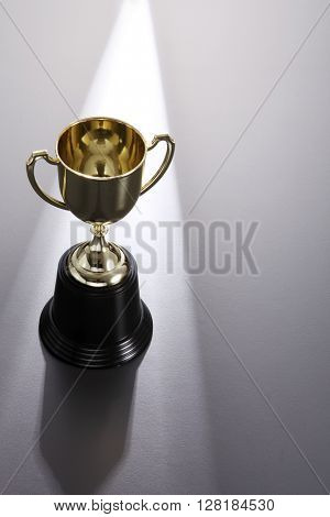 trophy on the gray background