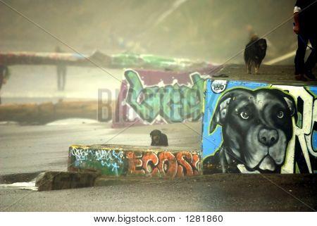 Dog Portait