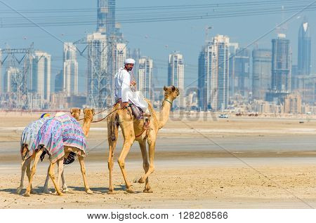 Dubai U.A.E. - February 18 2007: A camel racing trainer in the outskirts of the city