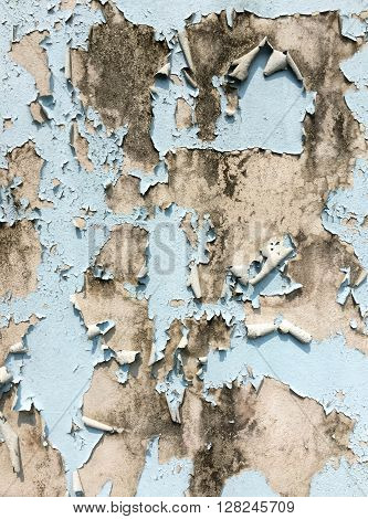 Color paint is peeling on a concrete wall surface