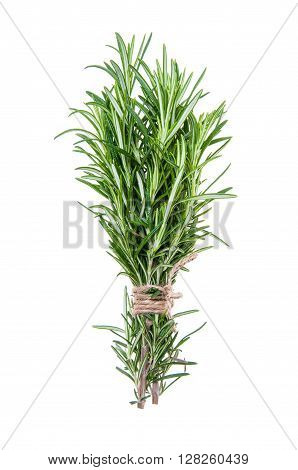 Fresh Rosemary sprigs tied in bundle isolated on white background