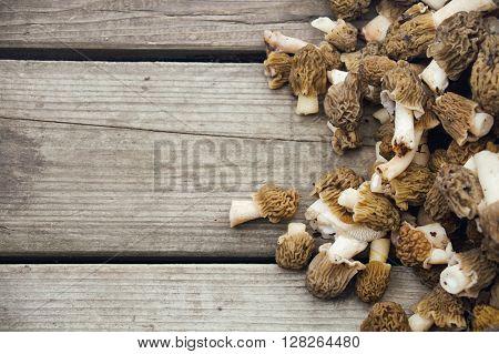 fresh morel mushrooms on old wooden background