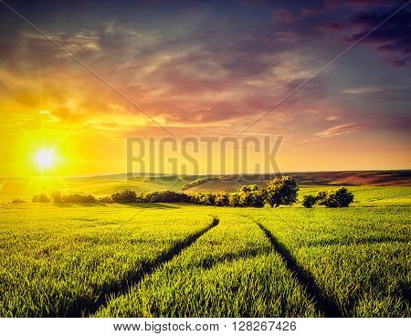 Vintage retro effect filtered hipster style image of dramatic sunset in fields of Moravia, Czech Republic