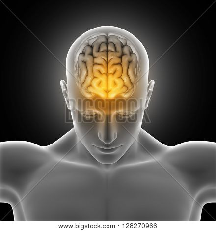3D render of a medical image of a male figure with brain highlighted