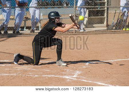 Fast high school softball player bunting the ball.
