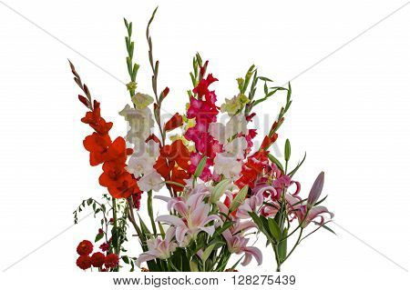Pink White Yellow Red Gladiolas And Lily Flowers