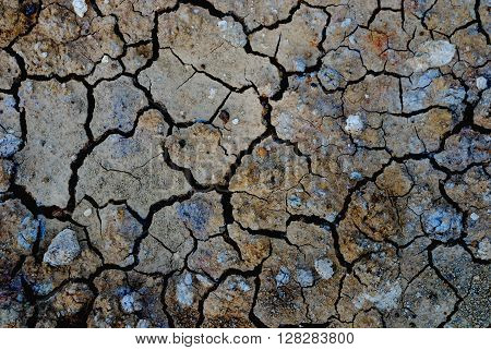 Soil degradation background of the global warming