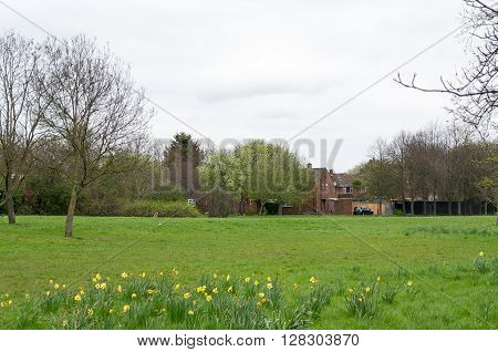 Beautiful european countryside - field and trees in Northolt Greater London United Kingdom