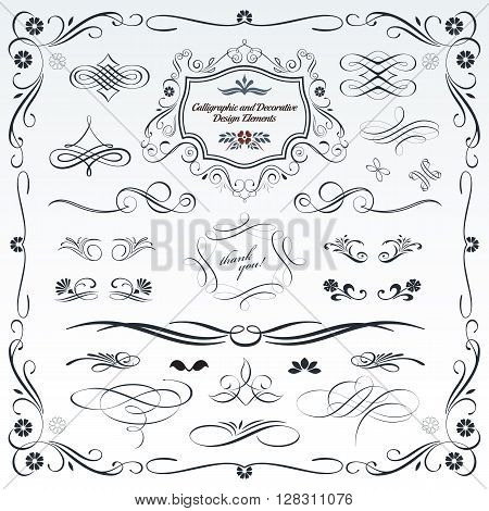 Collection of calligraphic and decorative design patterns embellishments in vector format.