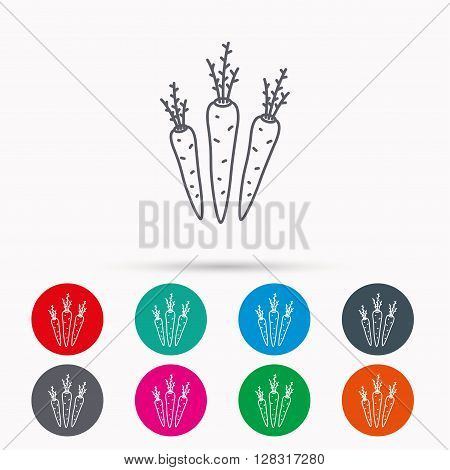 Carrots icon. Vegetarian food sign. Natural vegetables symbol. Linear icons in circles on white background.