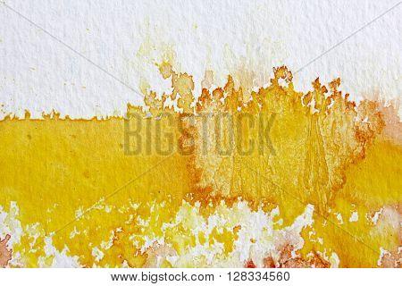 Yellow Watercolour Background 6
