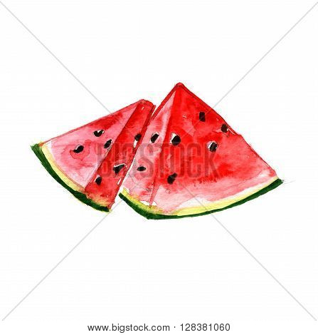 Watercolor summer insulated watermelon on white background