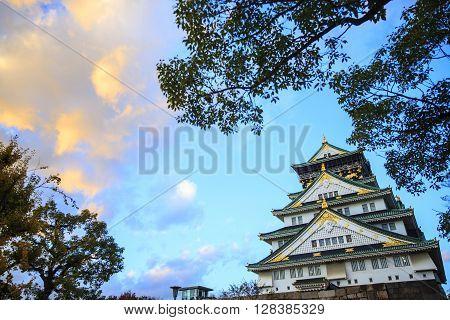 Osaka Castle Stree View In Osaka, Japan