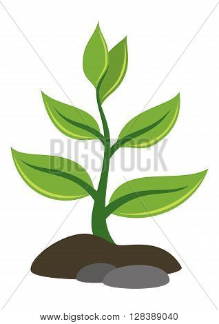 Symbolical Plant with Green Leaves Growing out of the Rocky Ground, Icon, Isolated on White Background. Vector