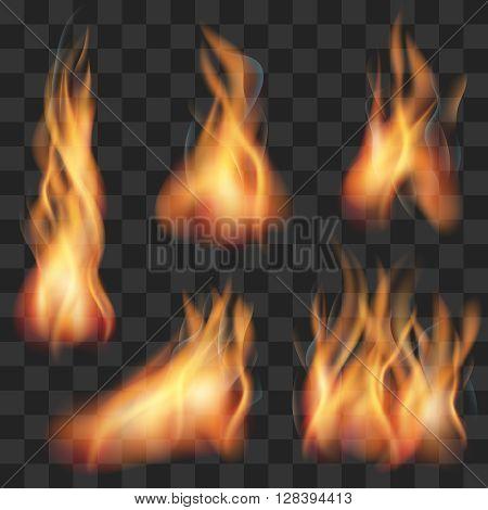 Vector realistic transparent fire flame set. Fire hot, flame fire, blaze fire illustration