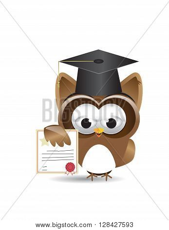 graduated owl with certificate and graduation hat