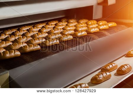 Fresh buns from the oven. Conveyor with bread. Baking bread. Workshop for production of bread. White bread in the oven. Hot buns. Confectionery.
