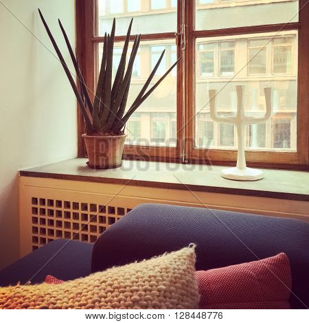 Window decorated with Sansevieria plant and candleholder. Interior design.
