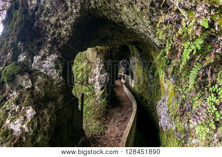 Levada from Ribeiro Frio to Portela, irrigation canal on Madeira island, Portugal poster