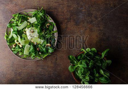 Fresh Salad Bio