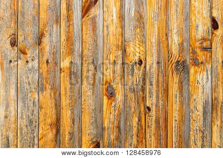 Wall Of Cherry Wood Texture Background Macro