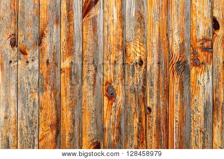 Wall Of Red Wood Texture Background Macro