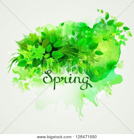 written word Spring. Season banner with fresh green composition