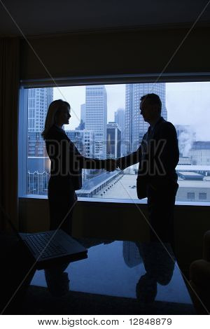 Silhouette of a businessman and businesswoman shaking hands. The city can be seen through the window in the background. Vertical shot.
