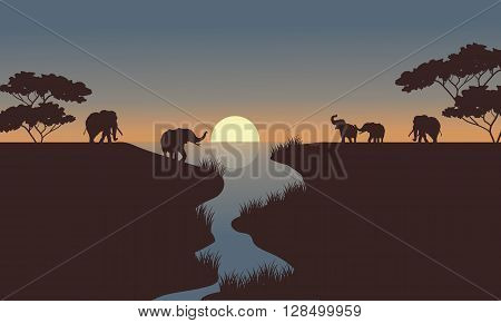 silhouette of elephants in the river at the morning